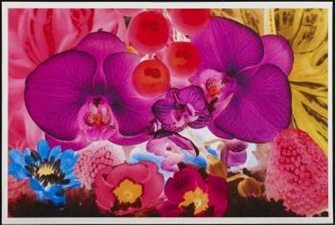 at the far edges of the universe: plate 4 by marc quinn