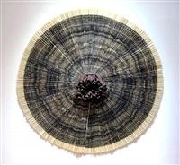 ciliary by ann hamilton