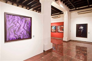 installation view by adrián fernández