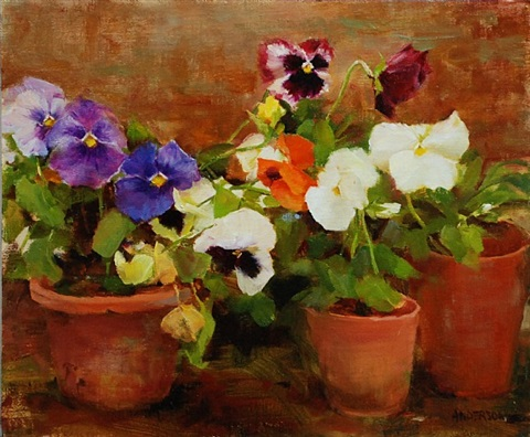 the color of pansies (sold) by kathy anderson