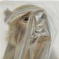 face monkey by mark fairnington