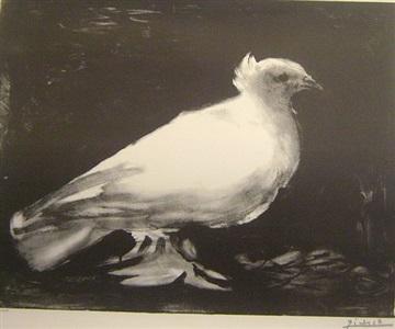 la colombe by pablo picasso