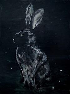 black rabbit by markus vater