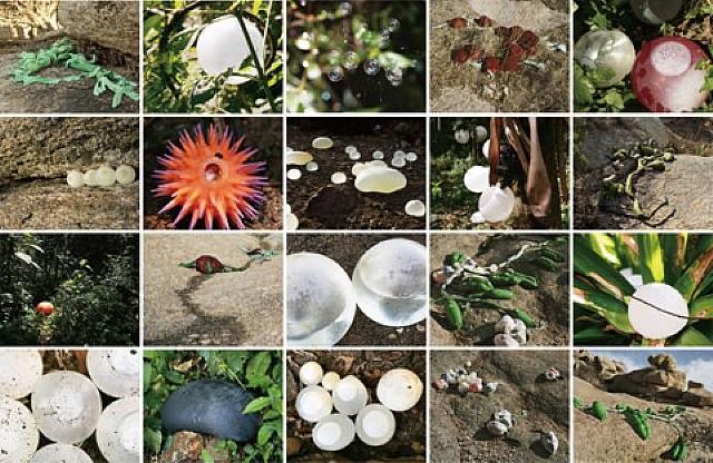 botanica by janaina tschäpe