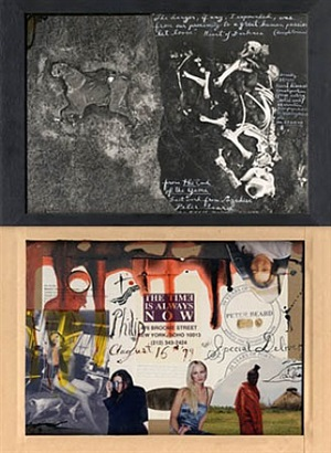 dead elephant from the air by peter beard