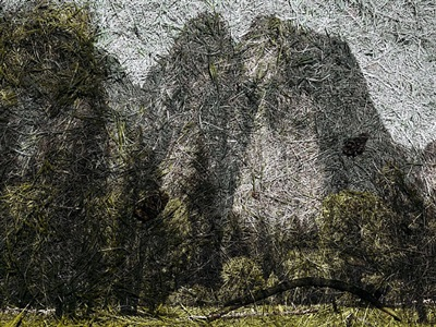 tent-camera image on ground: view of cathedral rocks from el capitan meadow, yosemite national park, california by abelardo morell