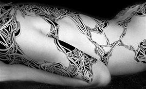 untitled (detail) by jean-luc moerman