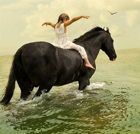 marari stallion #1 by tom chambers