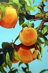untitled (peach 1) by mustafa hulusi