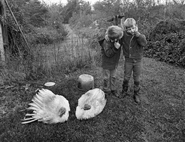 barry, dwayne and turkeys, danville, virginia, 1970 by emmet gowin
