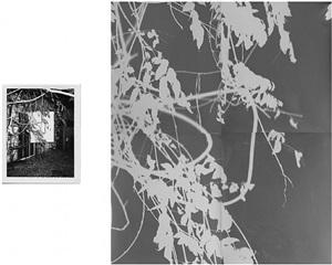 shot/reverse shot 7 (4 panels) by bryan graf