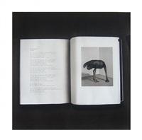 the ostrich (serie banda sonora) by marco mojica