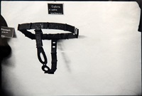 chastity belt by zoe leonard