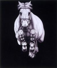 #12-2009 by joseph piccillo