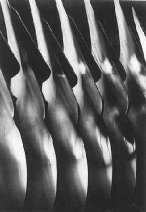plow blades, oilver chilled plow co. by margaret bourke-white
