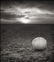 abandoned ostrich egg ambroseli by nick brandt
