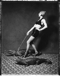 walking the croc, parisien series by vee speers