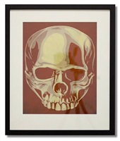 obey skull by shepard fairey