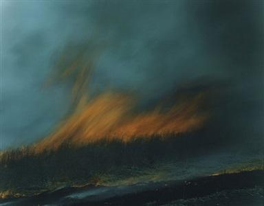 untitled, from the series ametsuchi by rinko kawauchi
