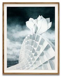 monumental - amaryllis by motoko dobashi