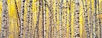 aspen and golden light, colorado by christopher burkett