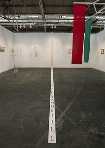 armory show, installation view 12 by terry fox