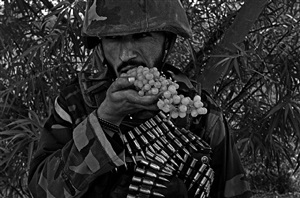 eating grapes in pashmul during a patrol in zhari district, kandahar, afghanistan by louie palu