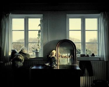 at the window (sea gulls) by joakim eskildsen