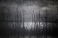 untitled (o. t.) by danja akulin