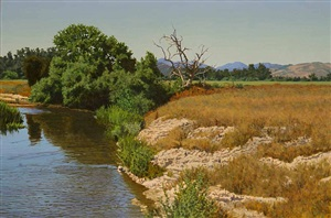 banks of the jolon by peter loftus
