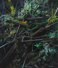 stumps and twigs by claire sherman