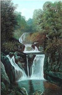 cascadas de tuxpango by antoine jean (baron gros) gros