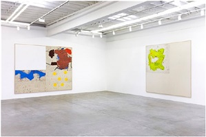 installation view by joe bradley