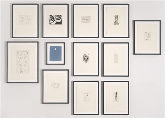 anatomy portfolio by louise bourgeois