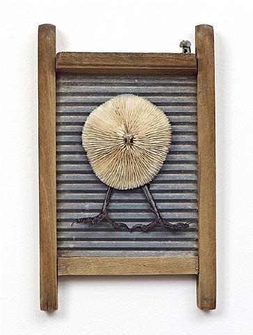 korallenvogel by daniel spoerri