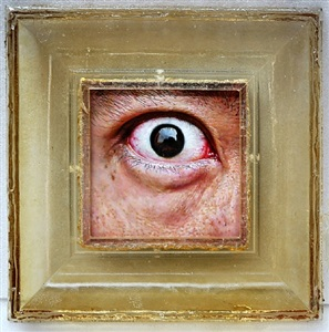 the artist's left eye by lu zhengyuan