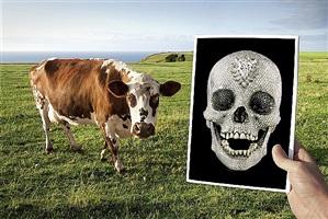 vaca y calavera by marcos lópez