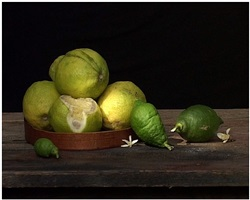zitrusfrüchte by gabriella gerosa