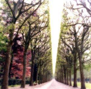 parc de sceaux, france (4-07-6c-9) by lynn geesaman