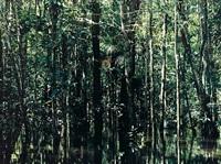 cano tonino-01, venezuela by axel hütte