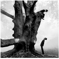 twins in tree, ny by rodney smith