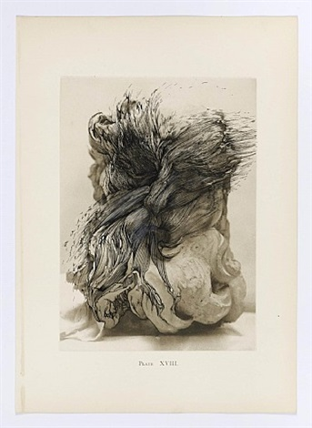 bernini and other studies, book ii, plate xviii by ann-marie james