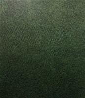 evergreen by neil raitt