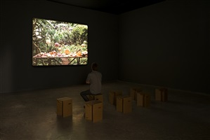 o problema de molyneux | exhibition view at galpão fortes vilaça by joão maria gusmão + pedro paiva