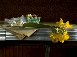 installment 7 from the series the gesture of tradition (daffodils) by toni pepe
