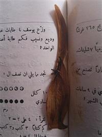 ex libris (ap 4561) by emily jacir