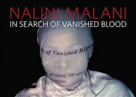in search of vanished blood by nalini malani