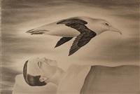 the albatross by robyn o'neil