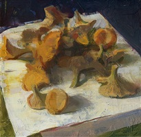 chantrelles by jon redmond