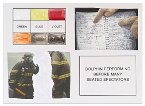 storyboard (in 4 parts): dolphin performing before many seated spectators by john baldessari